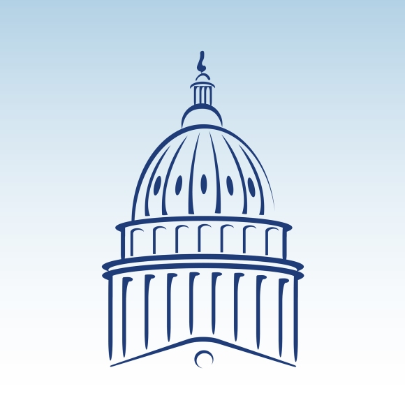 Stylized vector illustration of the US capitol dome