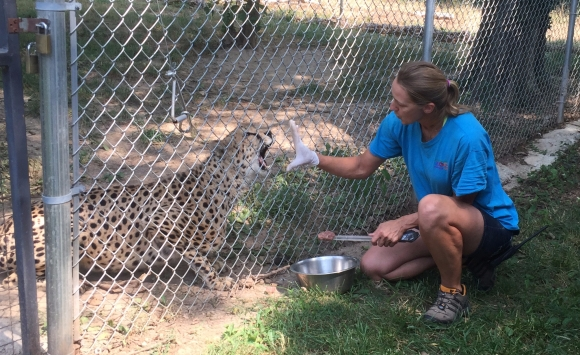 LAGERS member Sheila Samek at work at the Dickerson Park Zoo
